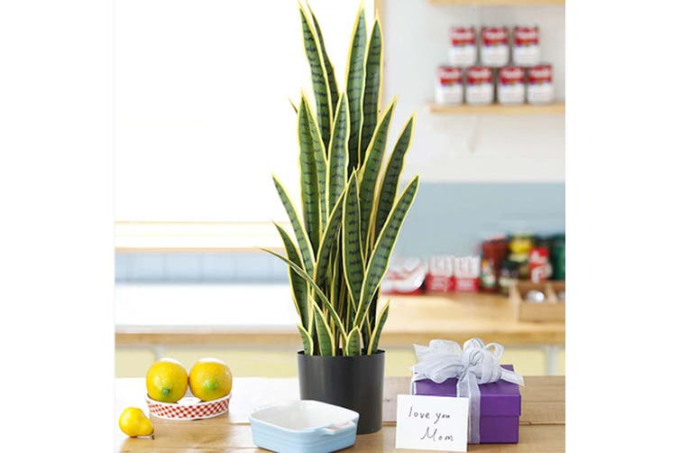 SOGA 2X 50cm Artificial Indoor Yellow Edge Tiger Piran Fake Decoration Tree Flower Pot Plant