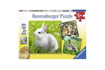 Cute Bunnies 3x49pcs Puzzle