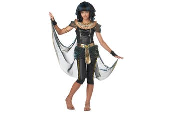 Dark Egyptian Princess Cleopatra Queen Of Nile Ancient Tween Girls Costume