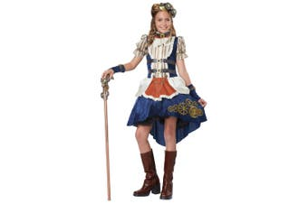 Steampunk Fashion Western 19th Victorian Science Fiction Tween Girls Costume