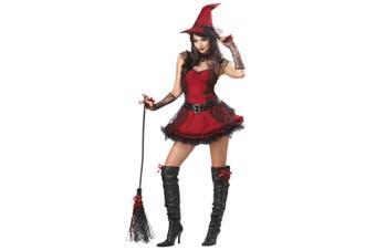 Mischievous Witch Wicked Halloween Women Costume