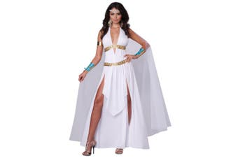 Glorious Goddess Greek Roman Queen of Athens Cleopatra Toga Womens Costume