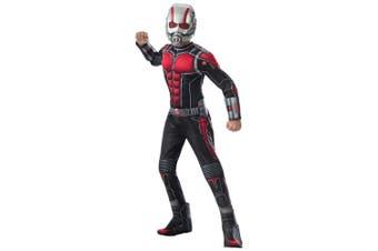 Ant-Man Deluxe Muscle Chest Marvel Avengers Superhero Scott Lang Boys Costume