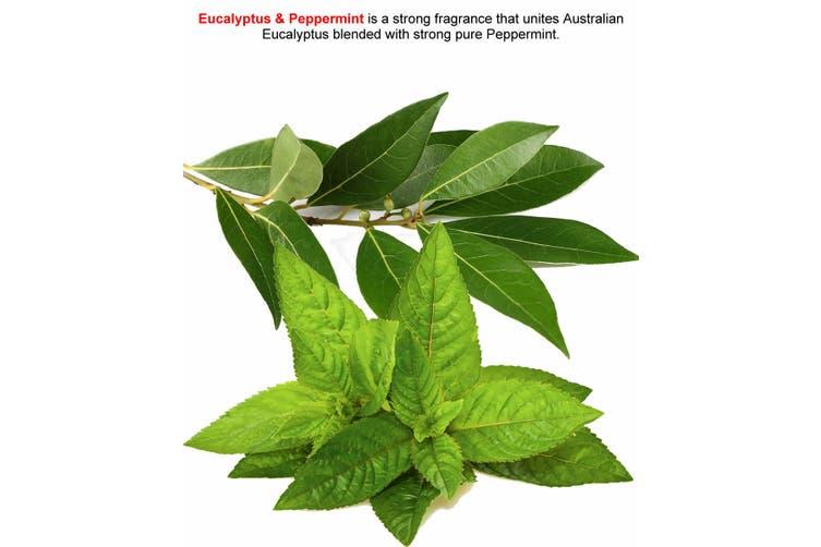 EUCALYPTUS & PEPPERMINT Diffuser Fragrance Oil Refill BONUS Free Reeds