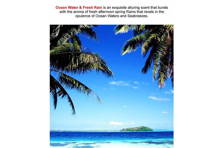 OCEAN WATERS & FRESH RAIN Diffuser Fragrance Oil Refill BONUS Free Reeds