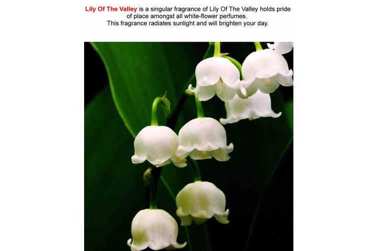 LILY OF THE VALLEY Diffuser Fragrance Oil Refill BONUS Free Reeds