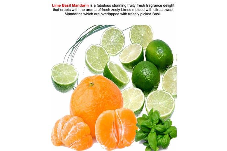 Lime Basil Mandarin Diffuser Fragrance Oil Refill Bonus Free Reeds Matt Blatt