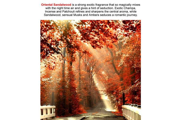 ORIENTAL SANDALWOOD Diffuser Fragrance Oil Refill BONUS Free Reeds