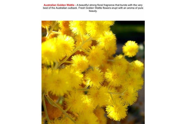 AUSTRALIAN GOLDEN WATTLE Diffuser Fragrance Oil Refill BONUS Free Reeds