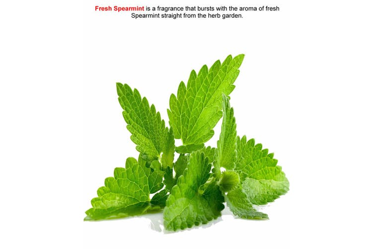 FRESH SPEARMINT Diffuser Fragrance Oil Refill BONUS Free Reeds