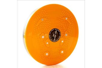 Twist Disc Home Gym Fitness Balance Board 360 Degree Spinning Plate