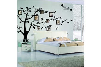Large 200x250cm DIY Photo Tree Removable Wall Stickers Mural Art Home Decor