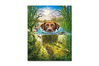 Paint By Numbers DIY Craft Kit Swimming Dog Canvas Wall Art *EO