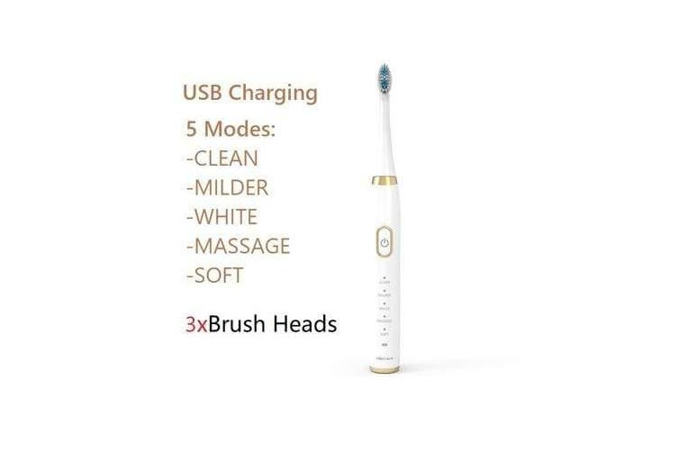 Electric Toothbrush with 3 Brush Heads