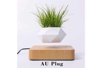 Levitating Pot Bonsai Magnetic Floating Rotating Plant Pot - AU Plug