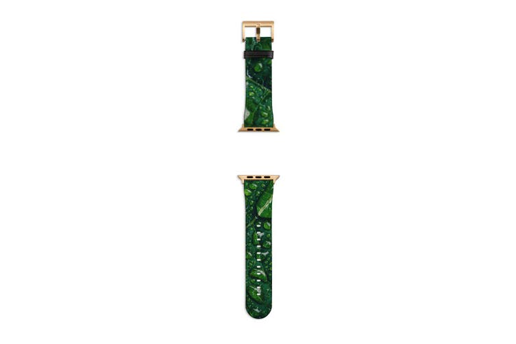 For Apple Watch Band 40mm/38mm PU Leather Gold Lugs  Water Droplets Green