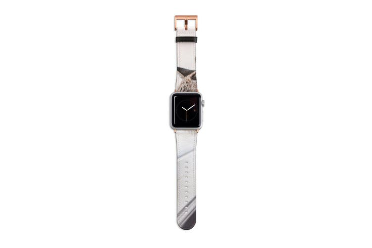 For Apple Watch Band 40mm/38mm PU Leather Rose Gold Lugs  Cat Enjoying The View