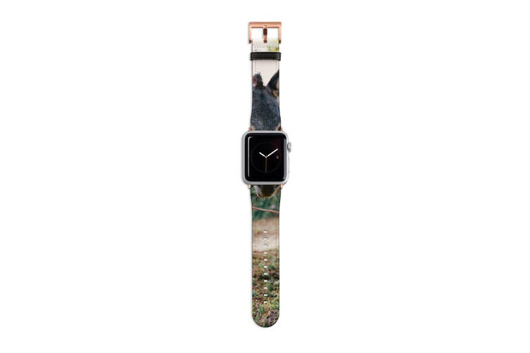 For Apple Watch Band 40mm/38mm PU Leather Rose Gold Lugs  Donkey Dirt Road