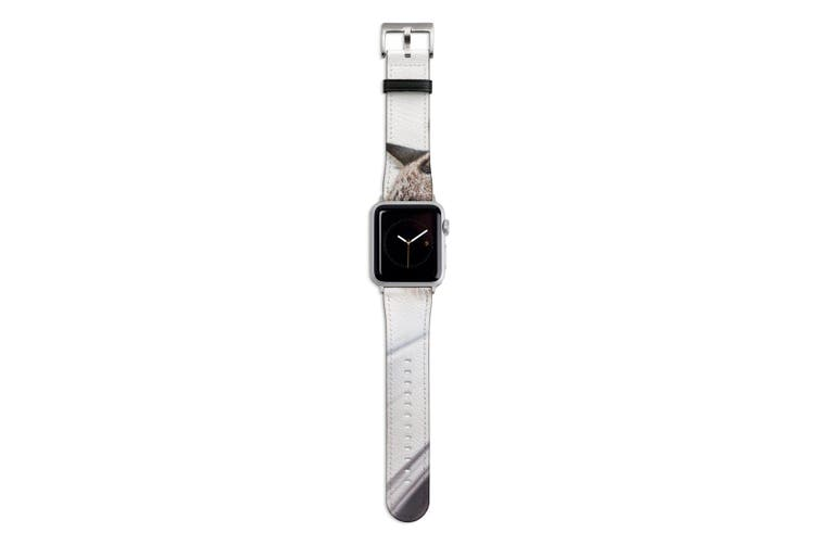 For Apple Watch Band 44mm/42mm PU Leather Silver Lugs  Cat Enjoying The View