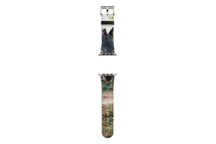 For Apple Watch Band 44mm/42mm PU Leather Silver Lugs  Donkey Dirt Road