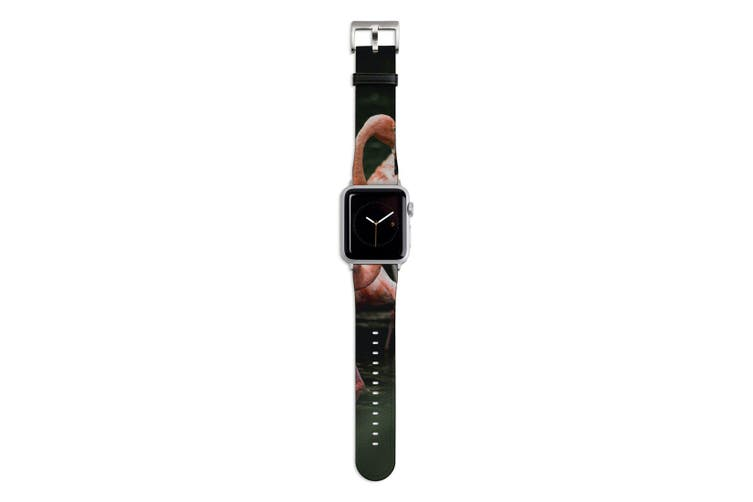 For Apple Watch Band 44mm/42mm PU Leather Silver Lugs  Flamingo In Pond