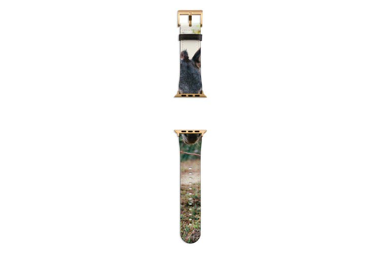 For Apple Watch Band 44mm/42mm PU Leather Gold Lugs  Donkey Dirt Road