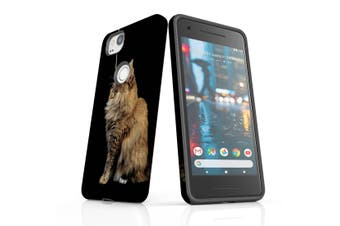 For Google Pixel 2 Case, Protective Back Cover, Playing Maine Coon