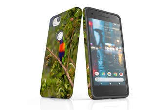 For Google Pixel 2 Case, Protective Back Cover, Rainbow Lorikeet