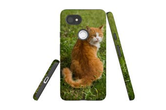For Google Pixel 2 XL Case, Protective Back Cover, Cat ToT