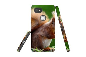 For Google Pixel 2 XL Case, Protective Back Cover, Cute Squirel