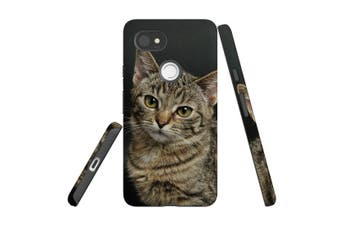 For Google Pixel 2 XL Case, Protective Back Cover, Brown Tabby Kitten