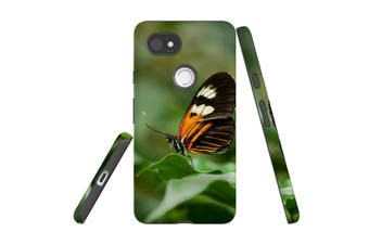 For Google Pixel 2 XL Case, Protective Back Cover, Heliconius Butterfly
