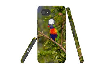 For Google Pixel 2 XL Case, Protective Back Cover, Rainbow Lorikeet