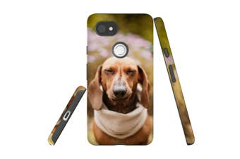 For Google Pixel 2 XL Case, Protective Back Cover, Sneezing Dachshund