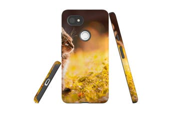 For Google Pixel 2 XL Case, Protective Back Cover, Curious Tabby Kitten