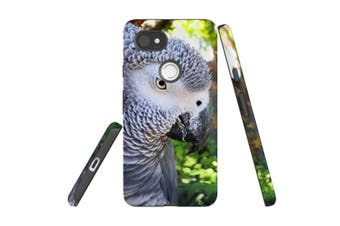 For Google Pixel 2 XL Case, Armour Back Cover, African Grey