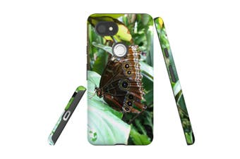 For Google Pixel 2 XL Case, Armour Back Cover, Butterfly Leaf