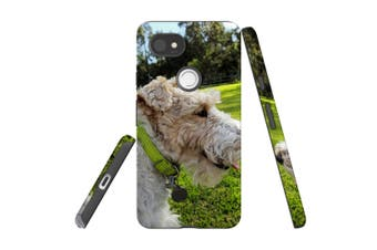 For Google Pixel 2 XL Case, Armour Back Cover, Smiling Wire Haired Fox Terrier