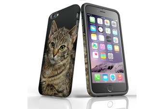 For iPhone 6S Plus Case, Protective Back Cover, Brown Tabby Kitten