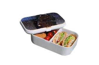 Lunch Box Food Container Snack Picnic Authentic Wood Strap Cutlery Magical