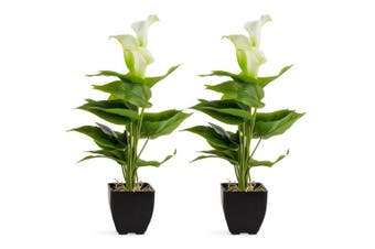 2x Potted Calla Lily 10x40cm Decoration Artificial Flower/Plant Home Decor WH/GR