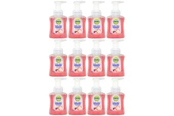 12x Dettol 250ml Liquid Foam Hand Care Wash Soap Rose/Cherry Pump