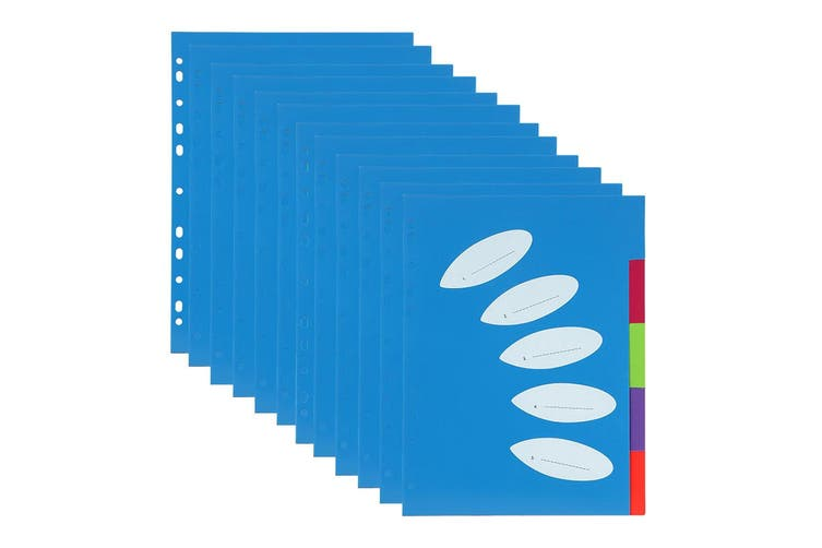 12PK ColourHide A4 5 TAB Paper/File/Subject Dividers Office/School Notebook Blue