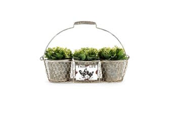 Farm-Life Metal 49cm 3-Pot Holder/Container Storage w/Handle Home Decor Rust GRY