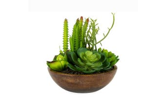 Mixed Artificial 18cm Succulents in Bowl-Shape Planter Home/Garden Plant Decor