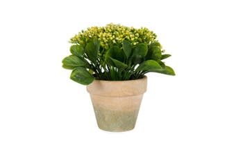 Potted Artificial 17cm Baby's Breath Faux Plastic Plant Home Room Decor Yellow
