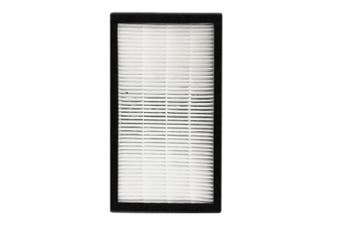 Heller Replacement Set True HEPA/Carbon Filter for HAP60 Air Purifier
