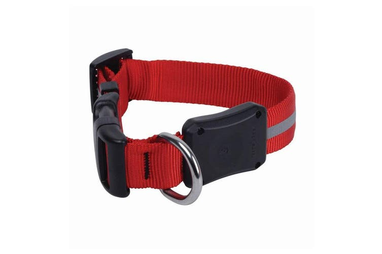 Nite Ize NiteDawg Red LED Light Glow/Flash Water Resistant Dog Collar 25-33cm S