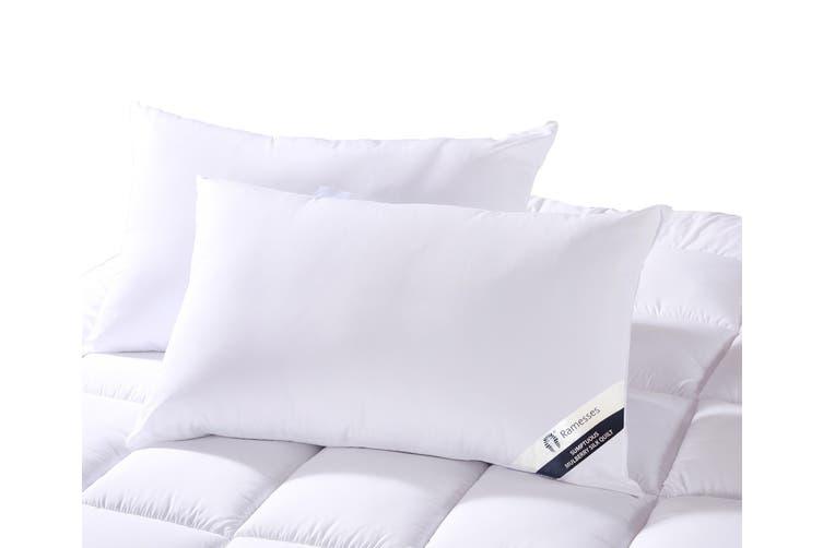 Ramesses Mulberry Silk Twin-Pack Pillow