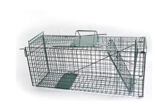 Humane Live Animal Trap Possum Rat Rabbit Hare Catcher Folding Cage